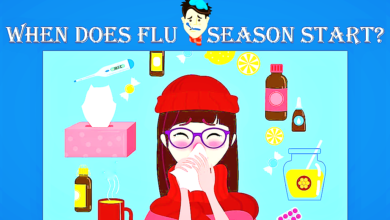 When does flu season start